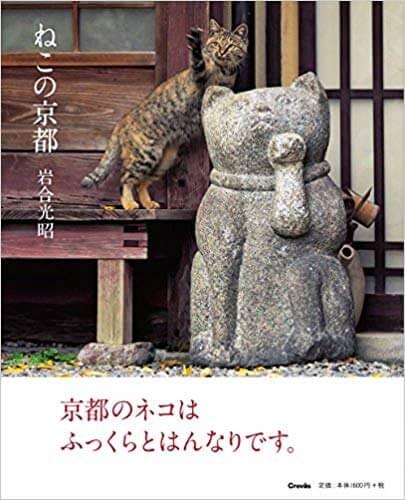 ねこの京都の表紙