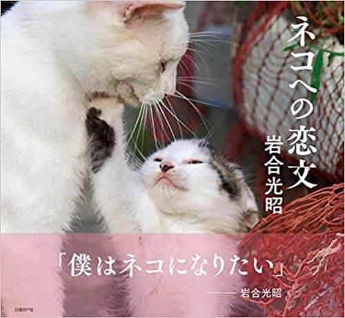 ネコへの恋文の表紙