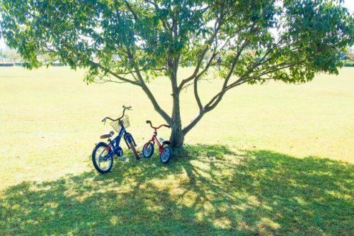 サイクリング中の一休み
