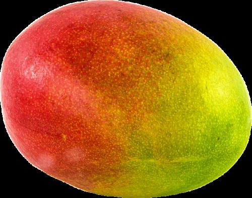 大きな丸ごとマンゴー