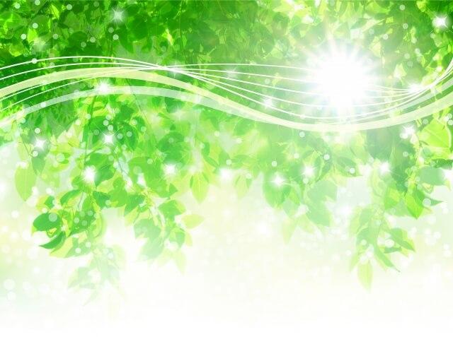 疲労回復のある緑の香りのイメージ画像