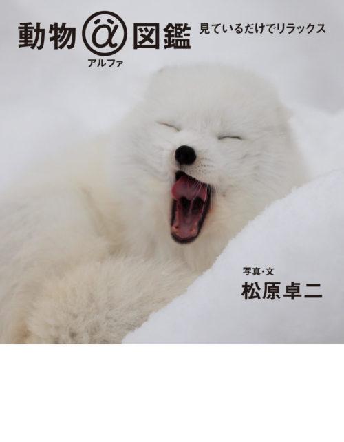 「動物アルファ図鑑 見ているだけでリラックス」の表紙