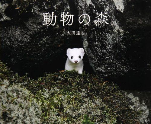 「動物の森」の表紙
