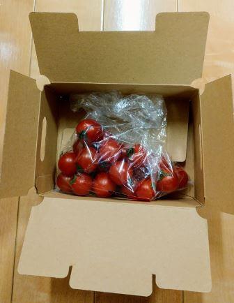 「大地を守る会」の「ミニトマト」の箱を開けた