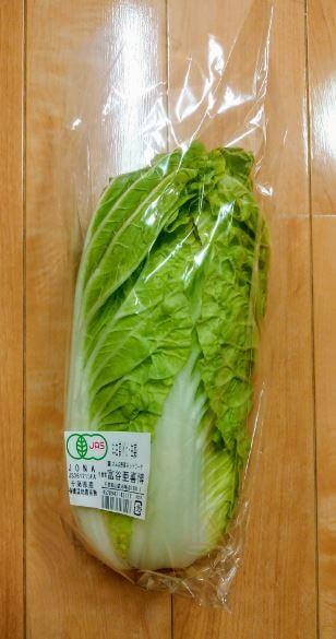 「大地を守る会」から宅配された「ミニ白菜」