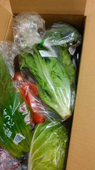 「大地を守る会」から届いた宅配野菜の入ったダンボール