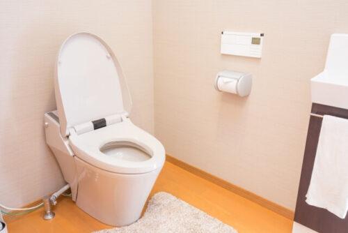 一般家庭のオーソドックスなトイレ